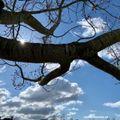 Andre Rheaume FRANCAIS Cloudcast #235