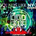 Vocal House :  Sounds Like NYC v2