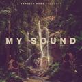 Shaolin Dubz - My Sound