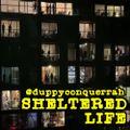 Sheltered Life (Nu-Disco Set, Part 1)