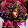 DJ B.Nice - Montreal - Deep, Tribal & Sexy 176 (*200% Sensual Vocal AFROSOUL - Soulful Deep House*)