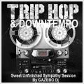 TRIP HOP & DOWNTEMPO / Sweet Unfinished Sympathy Session By GAZEBO Dj TTM.
