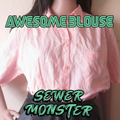 Awesome Blouse