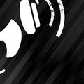 The White Panda vs. Hype Machine - 2011 Music Blog Zeitgeist Mix