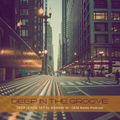 Deep In The Groove | Deep House Set | DEM Radio Podcast
