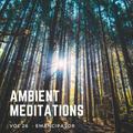 Ambient Meditations Vol 26 - Emancipator