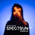 Joris Voorn Presents: Spectrum Radio 216