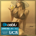 Summer Vibez - Vol1 2017 - Reggaeton/HipHop/Moombahton