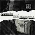 Sounds And Thoughts (Vers. 1.0): Why Is Everything So Hard?