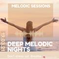 Deep Melodic Nights