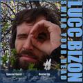 Groovin, Rhythmic Trip Hop , Instrumental Hip Hop Downtempo special Guest Lucc Bizon Swing Your Head