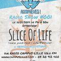 ACOUPHENES! RADIO SHOW S1#01 (16-01-2014) w. SLICE OF LIFE (indie-punk FR)