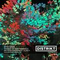 Syd Gris - DISTRIKT Music - Episode 173