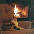 Warm & Smooth