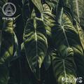 Klarca - Palms (Original Mixtape)