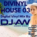 Divinyl House 03