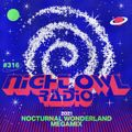 Night Owl Radio 316 ft. Nocturnal Wonderland 2021 Mega-Mix
