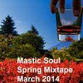 Mastic Soul Spring Mixtape (March 2014)