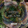Cadenza Podcast 122 - Joel Alter (Cycle)