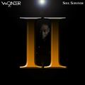 9th Wonder - Soul Survivor Vol II (Djaytiger blend)