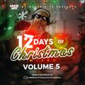 12th Day of Christmas Mixes Vol. 5 w/ DJ Whyte Nite