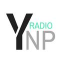 Ep. 6 Buffalo Bay - Music Matters Podcast Ep. 6 w/Buffalo Bay