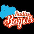 Radio Barjots du 14/11/2019 - La sécurité au marché de Noël