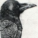 Mutato_Nomine Profile Image