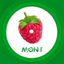 mont. Profile Image