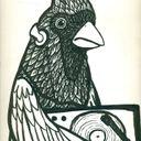 birdmasterkevin Profile Image