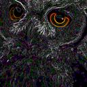 elbuho Profile Image