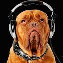 DJ Hunter