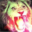 Lion_The_Ferocious_Beats Profile Image