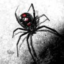 BlackWidow Live Profile Image