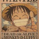 luffy Profile Image