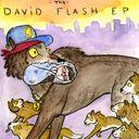 David Flash Profile Image