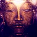 Maitreya Profile Image