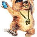 Requiem of the Wombat Profile Image