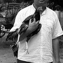 Sharik Choudhury Profile Image