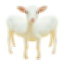 doguramagura Profile Image