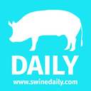 SwineDaily