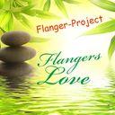 York Zimmer / Flanger-Project