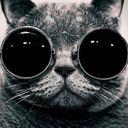 Ruxto Profile Image