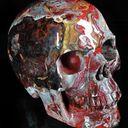 Perseid Profile Image