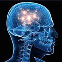 Stereoptical Profile Image