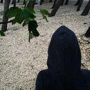 lalich Profile Image