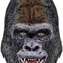 Bob Corsi Profile Image