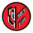 RDU98.5FM Profile Image