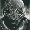 Terreurs Nocturnes Profile Image