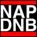 NAP DNB Profile Image